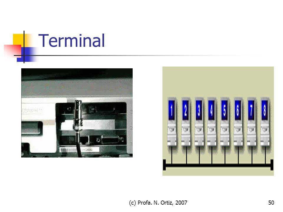 (c) Profa. N. Ortiz, 200750 Terminal