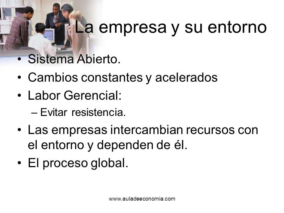 www.auladeeconomia.com Ambiente externo Son todas las fuerzas relevantes fuera de los límites de la compañía.