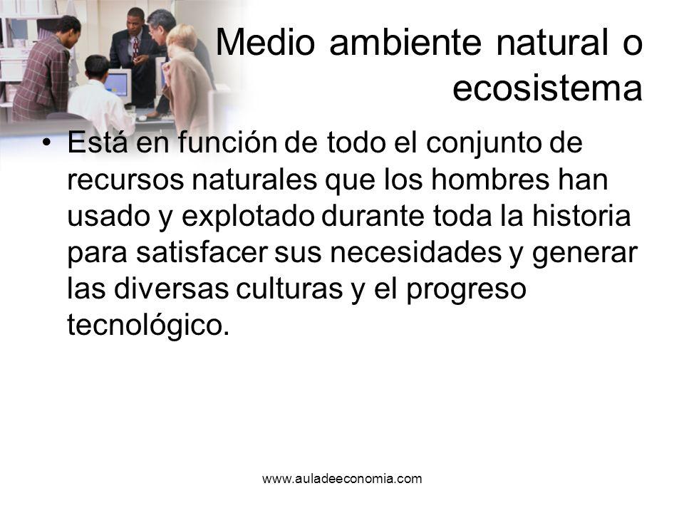 www.auladeeconomia.com Medio ambiente natural o ecosistema Algunos de estos recursos son renovables, como la madera y otros no, como es el caso del petróleo.
