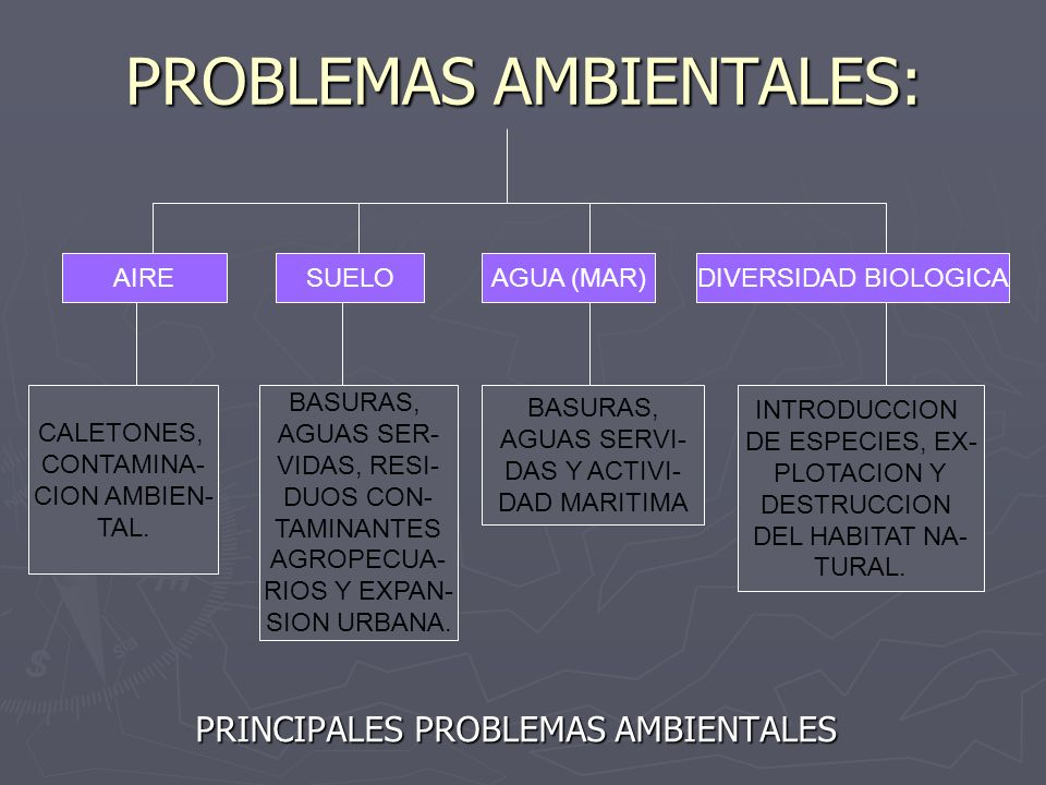 PROBLEMAS AMBIENTALES: PRINCIPALES PROBLEMAS AMBIENTALES AIRESUELOAGUA (MAR)DIVERSIDAD BIOLOGICA CALETONES, CONTAMINA- CION AMBIEN- TAL. BASURAS, AGUA