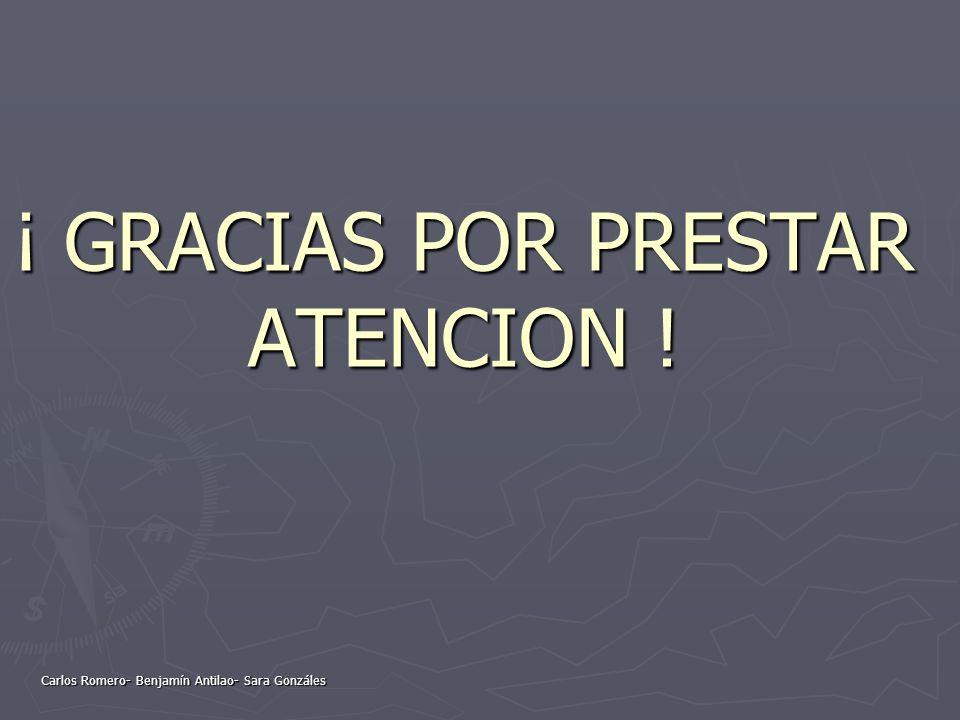 ¡ GRACIAS POR PRESTAR ATENCION ! Carlos Romero- Benjamín Antilao- Sara Gonzáles