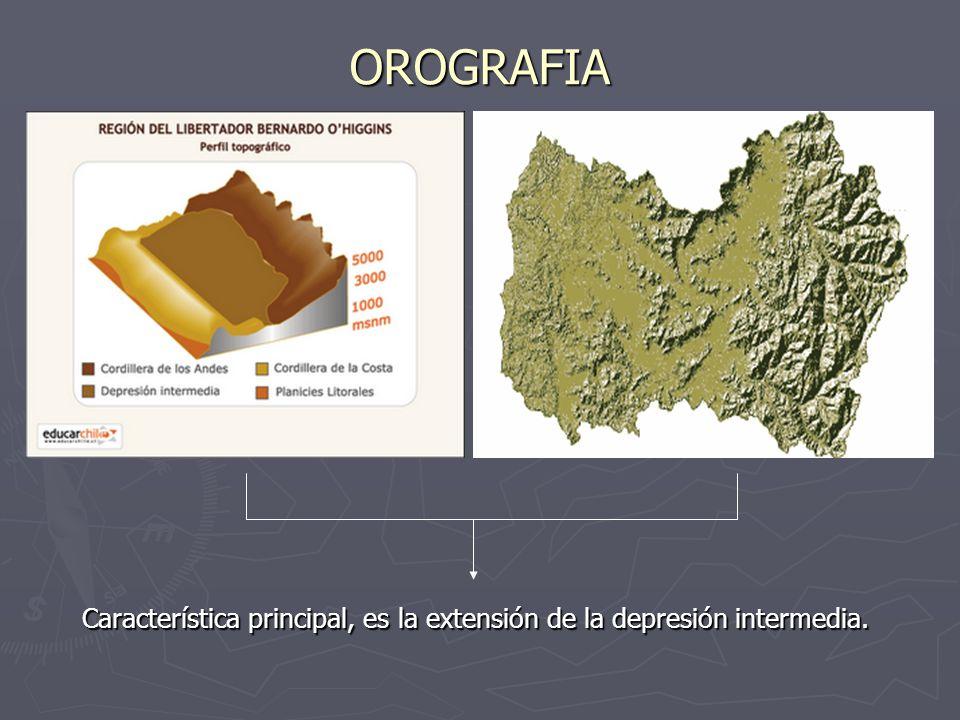 OROGRAFIA Característica principal, es la extensión de la depresión intermedia.