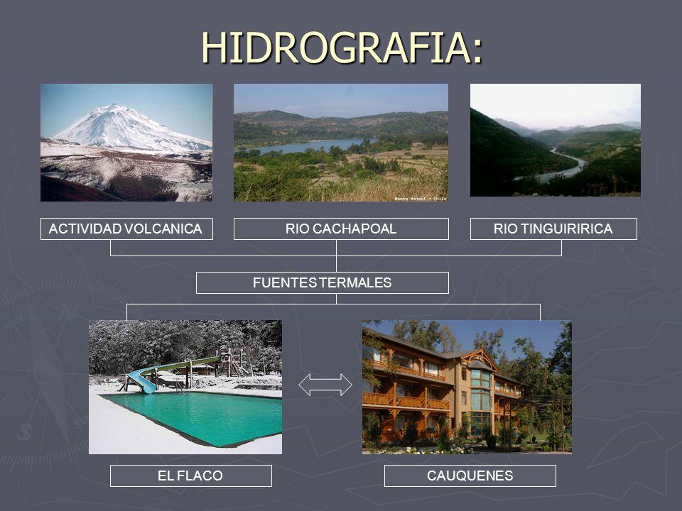 HIDROGRAFIA: ACTIVIDAD VOLCANICARIO CACHAPOALRIO TINGUIRIRICA FUENTES TERMALES EL FLACOCAUQUENES