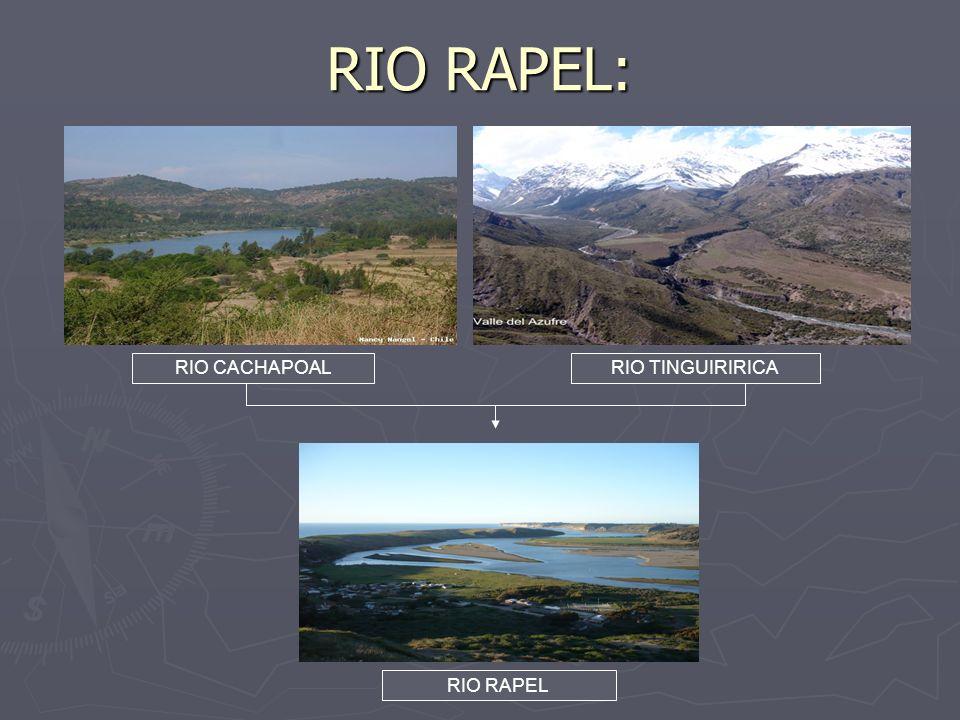 RIO RAPEL: RIO CACHAPOALRIO TINGUIRIRICA RIO RAPEL