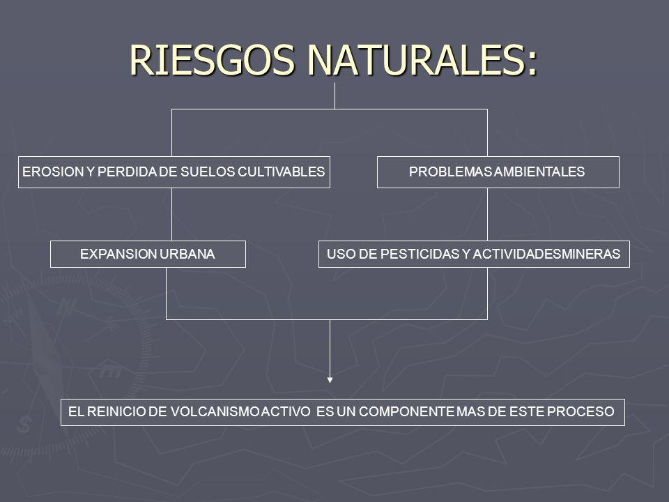 RIESGOS NATURALES: EROSION Y PERDIDA DE SUELOS CULTIVABLESPROBLEMAS AMBIENTALES EXPANSION URBANAUSO DE PESTICIDAS Y ACTIVIDADESMINERAS EL REINICIO DE