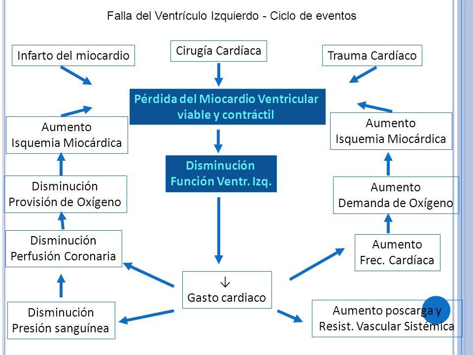 Falla del Ventrículo Izquierdo - Ciclo de eventos Pérdida del Miocardio Ventricular viable y contráctil Cirugía Cardíaca Infarto del miocardioTrauma C
