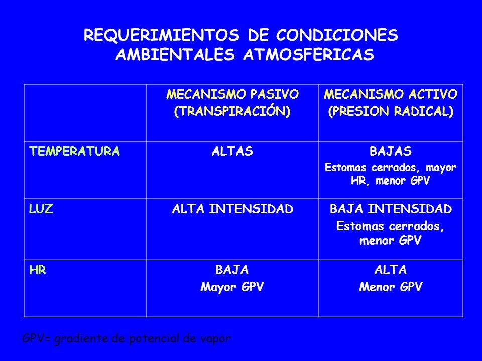 REQUERIMIENTOS DE CONDICIONES AMBIENTALES ATMOSFERICAS MECANISMO PASIVO (TRANSPIRACIÓN) MECANISMO ACTIVO (PRESION RADICAL) TEMPERATURAALTASBAJAS Estom
