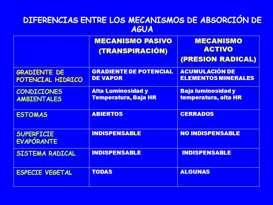 DIFERENCIAS ENTRE LOS MECANISMOS DE ABSORCIÓN DE AGUA MECANISMO PASIVO (TRANSPIRACIÓN) MECANISMO ACTIVO (PRESION RADICAL) GRADIENTE DE POTENCIAL HIDRI