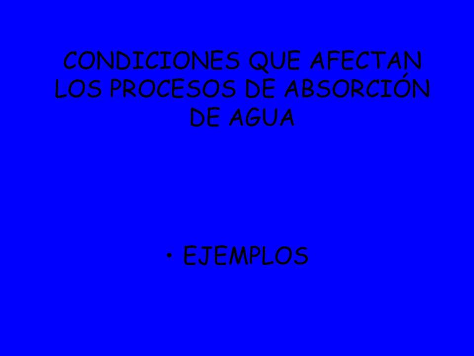 EJEMPLOS CONDICIONES QUE AFECTAN LOS PROCESOS DE ABSORCIÓN DE AGUA