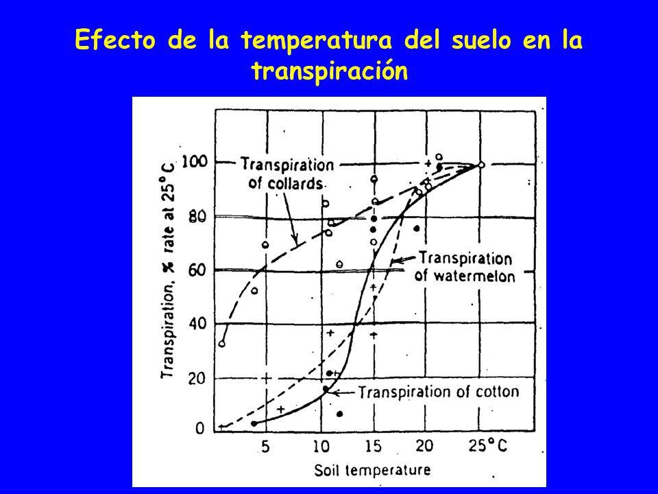 Efecto de la temperatura del suelo en la transpiración