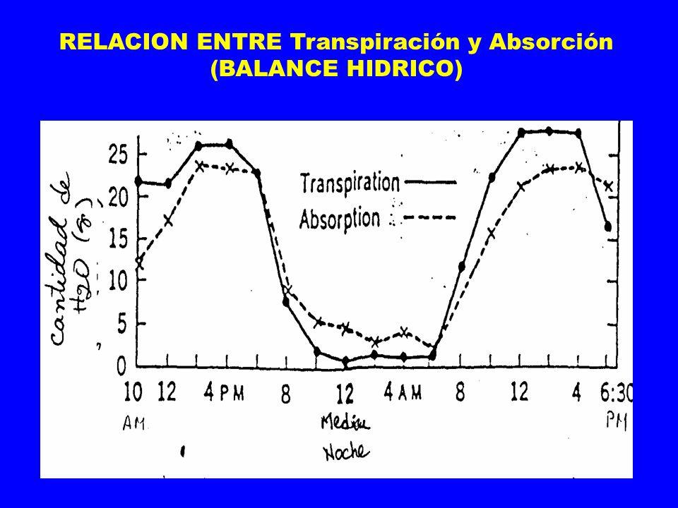 RELACION ENTRE Transpiración y Absorción (BALANCE HIDRICO)