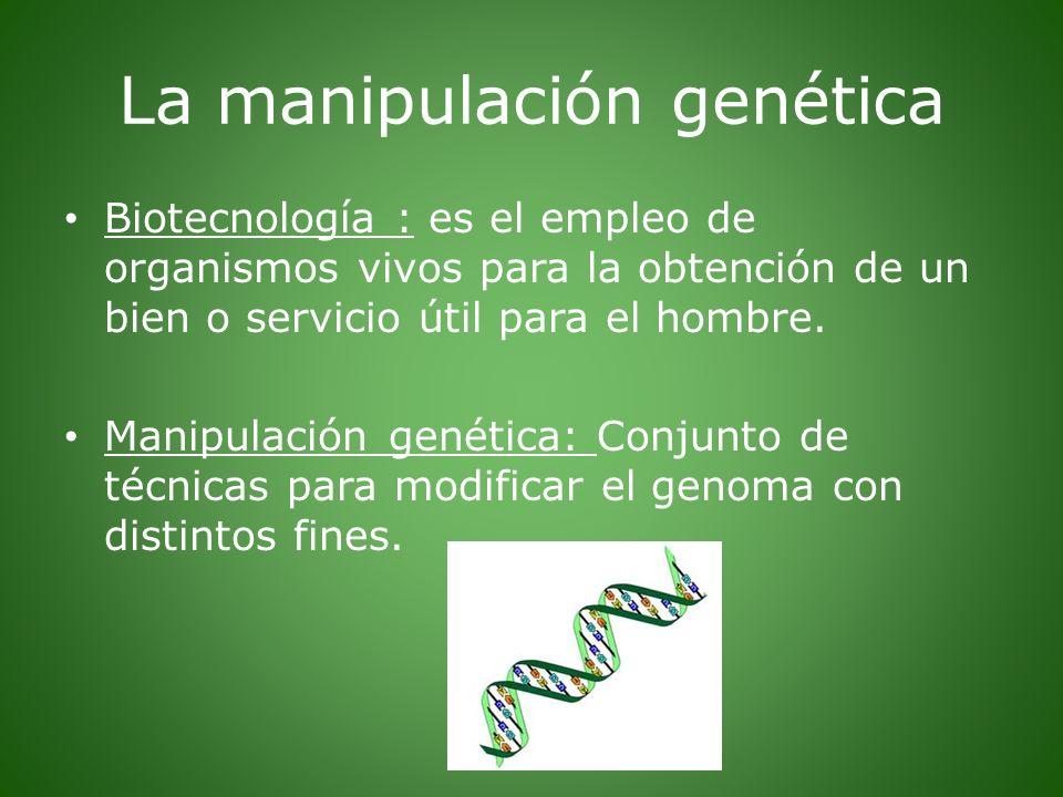 La manipulación genética Biotecnología : es el empleo de organismos vivos para la obtención de un bien o servicio útil para el hombre. Manipulación ge