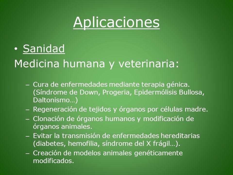 Aplicaciones Sanidad Medicina humana y veterinaria: – Cura de enfermedades mediante terapia génica. (Síndrome de Down, Progeria, Epidermólisis Bullosa