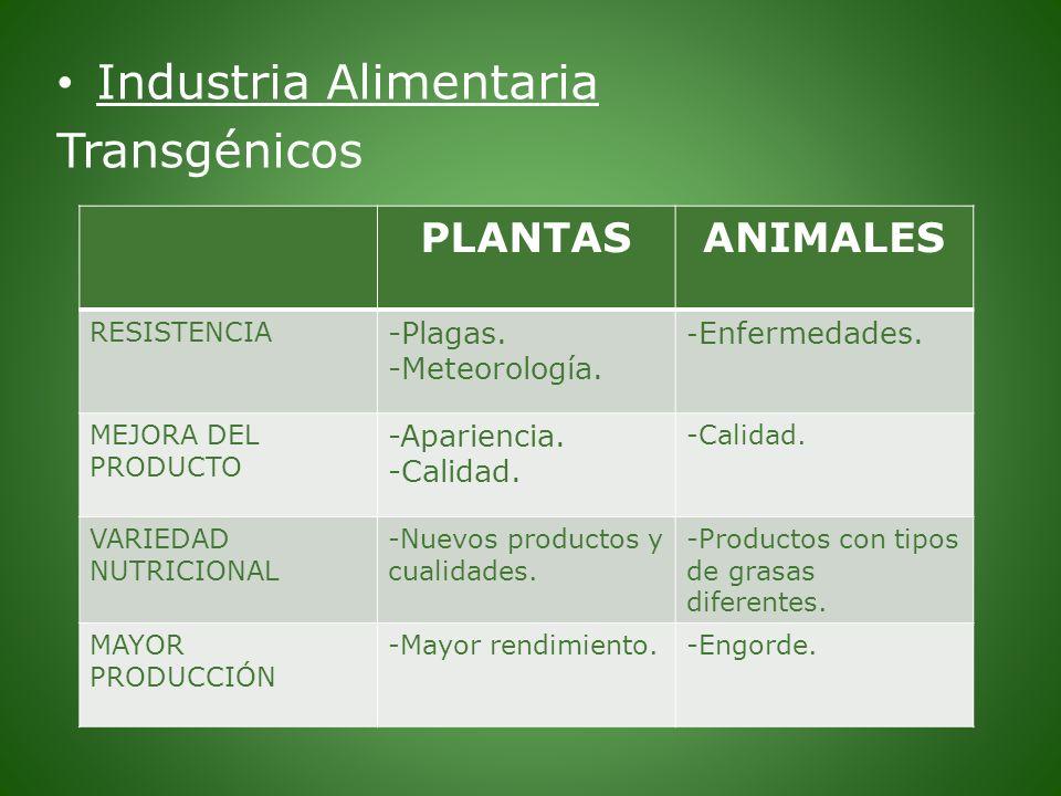 Industria Alimentaria Transgénicos PLANTASANIMALES RESISTENCIA -Plagas. -Meteorología. - Enfermedades. MEJORA DEL PRODUCTO -Apariencia. -Calidad. VARI