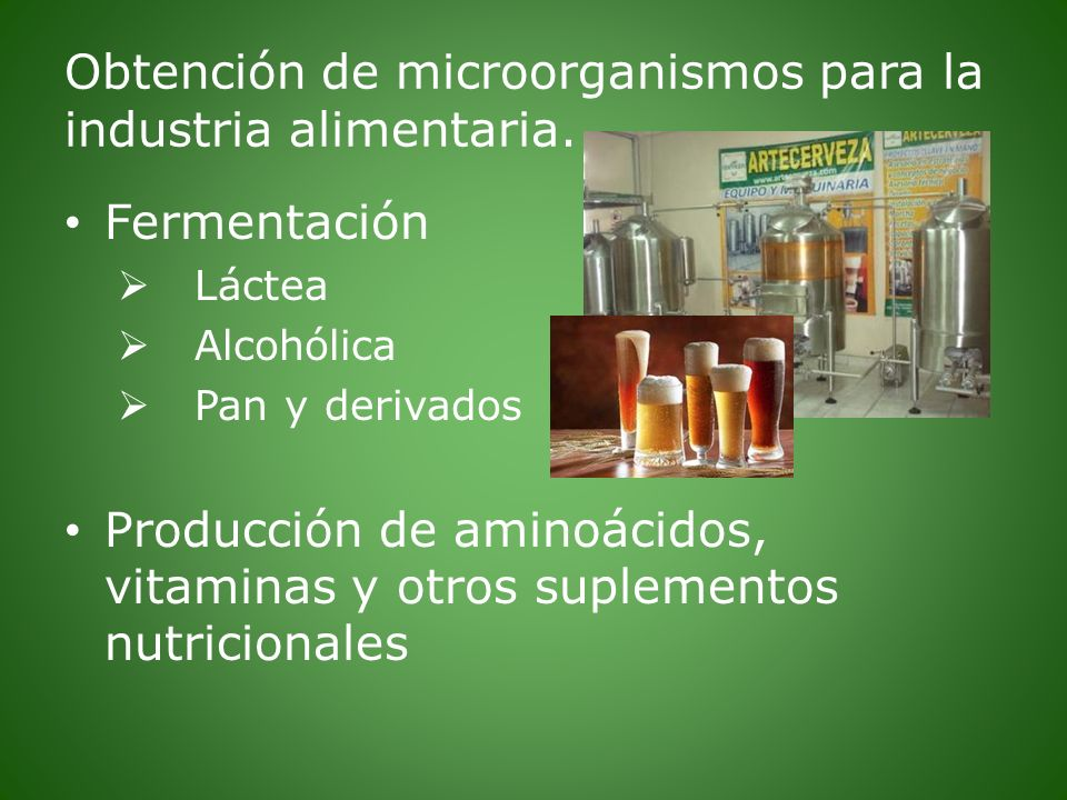 Obtención de microorganismos para la industria alimentaria. Fermentación Láctea Alcohólica Pan y derivados Producción de aminoácidos, vitaminas y otro