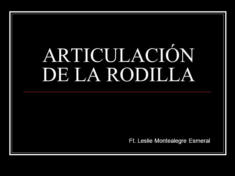 ARTICULACIÓN DE LA RODILLA Ft. Leslie Montealegre Esmeral