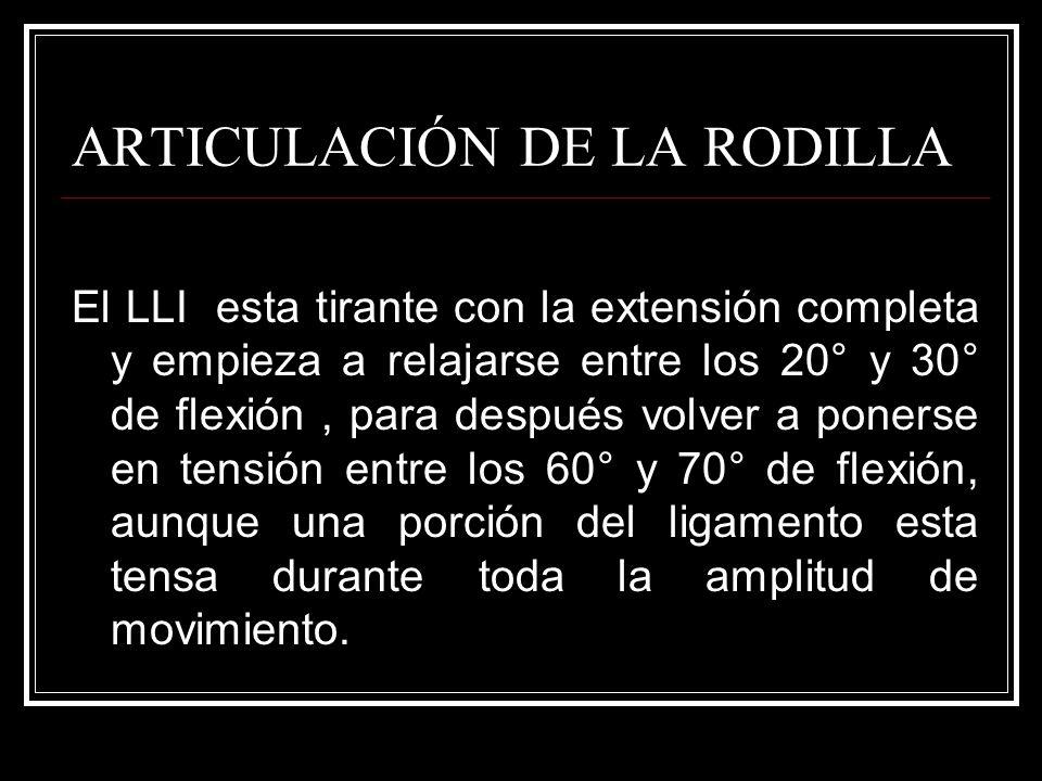 ARTICULACIÓN DE LA RODILLA El LLI esta tirante con la extensión completa y empieza a relajarse entre los 20° y 30° de flexión, para después volver a p