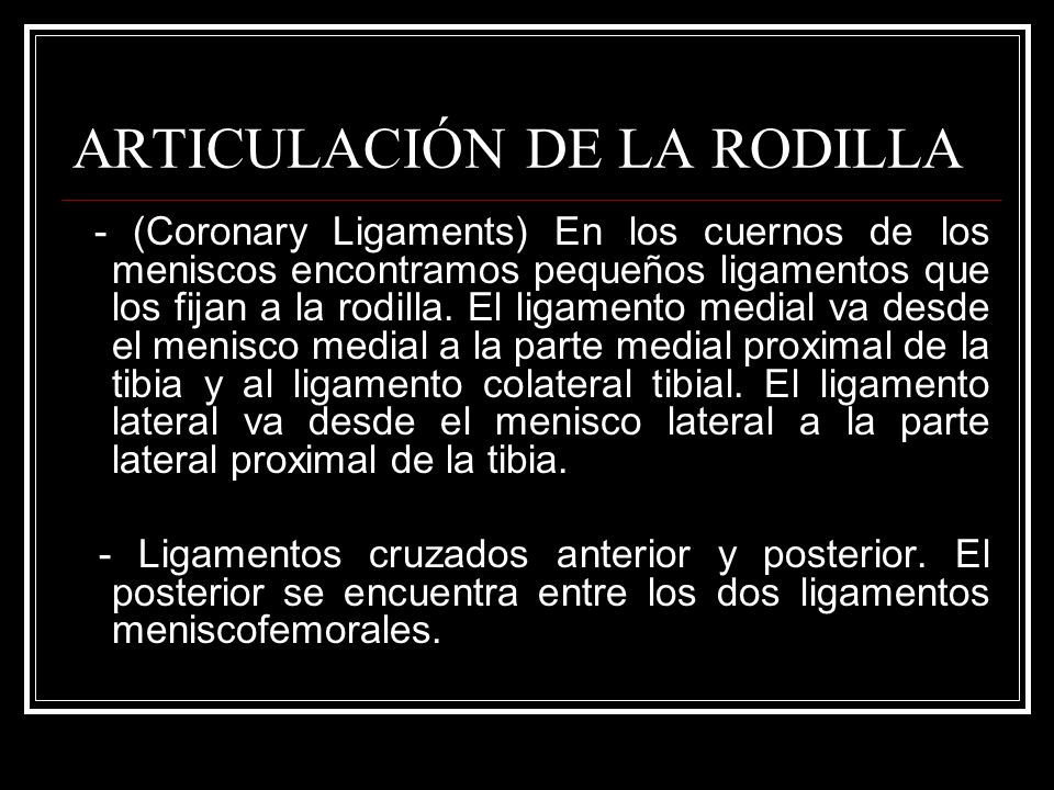 ARTICULACIÓN DE LA RODILLA - (Coronary Ligaments) En los cuernos de los meniscos encontramos pequeños ligamentos que los fijan a la rodilla. El ligame