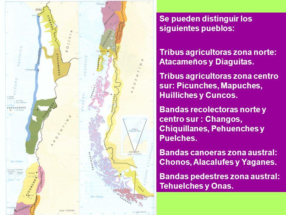 Se pueden distinguir los siguientes pueblos: Tribus agricultoras zona norte: Atacameños y Diaguitas. Tribus agricultoras zona centro sur: Picunches, M
