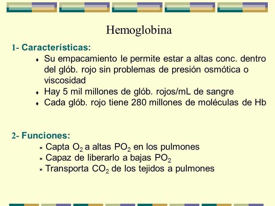 Hemoglobina 1- Características: Su empacamiento le permite estar a altas conc. dentro del glób. rojo sin problemas de presión osmótica o viscosidad Ha
