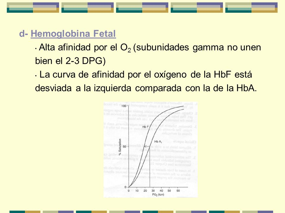 d- Hemoglobina Fetal Alta afinidad por el O 2 (subunidades gamma no unen bien el 2-3 DPG) La curva de afinidad por el oxígeno de la HbF está desviada