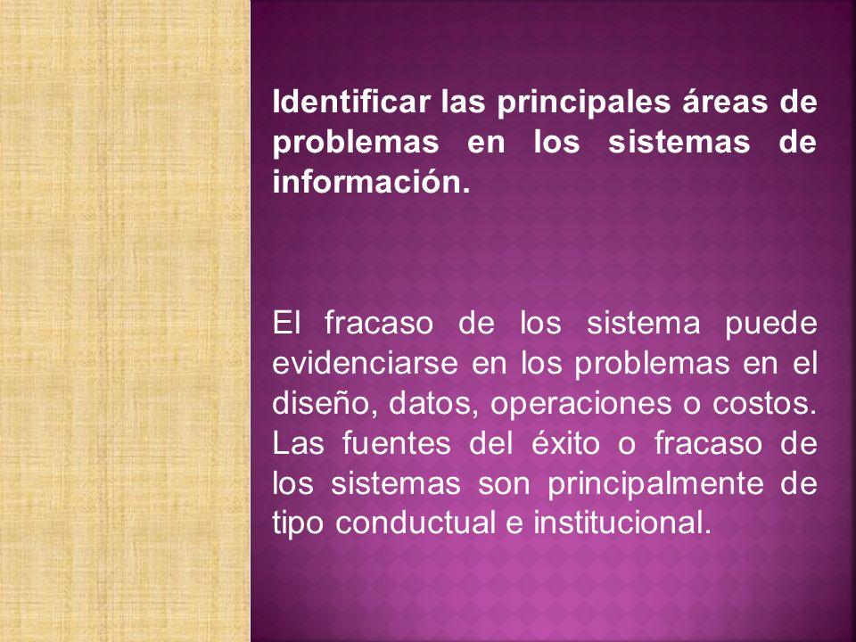 Identificar las principales áreas de problemas en los sistemas de información.