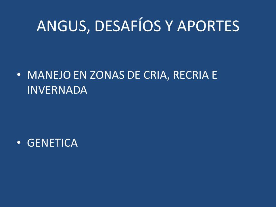ANGUS, DESAFÍOS Y APORTES MANEJO EN ZONAS DE CRIA, RECRIA E INVERNADA GENETICA