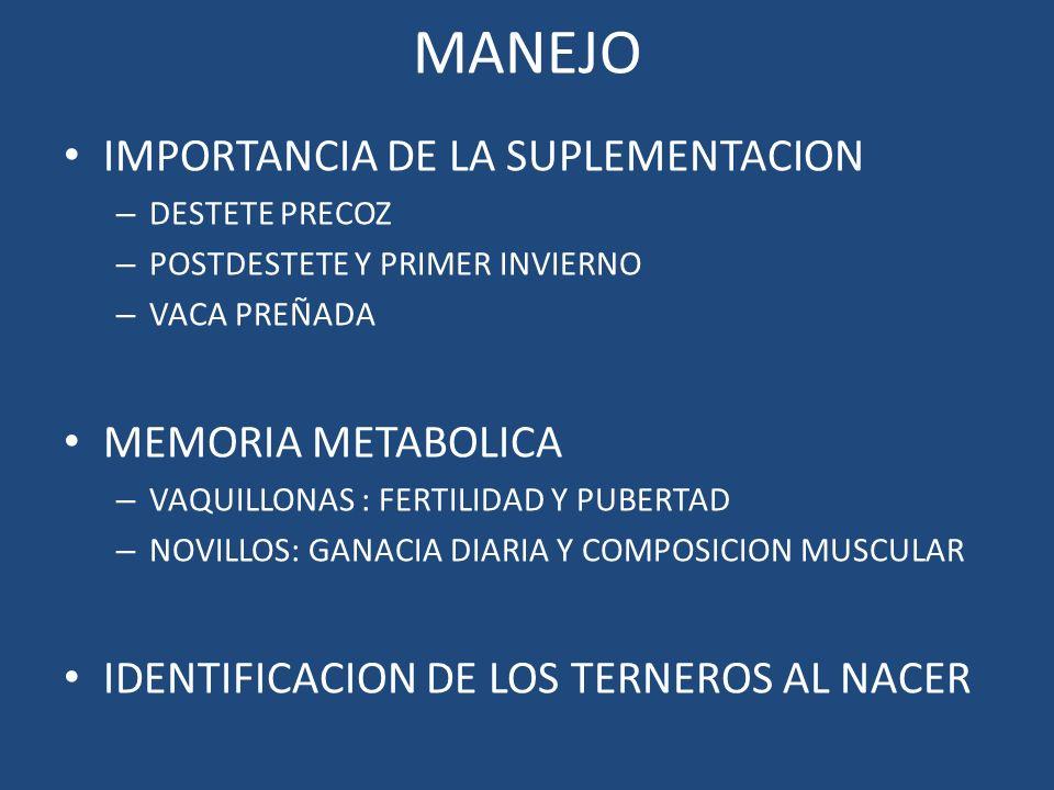 MANEJO IMPORTANCIA DE LA SUPLEMENTACION – DESTETE PRECOZ – POSTDESTETE Y PRIMER INVIERNO – VACA PREÑADA MEMORIA METABOLICA – VAQUILLONAS : FERTILIDAD