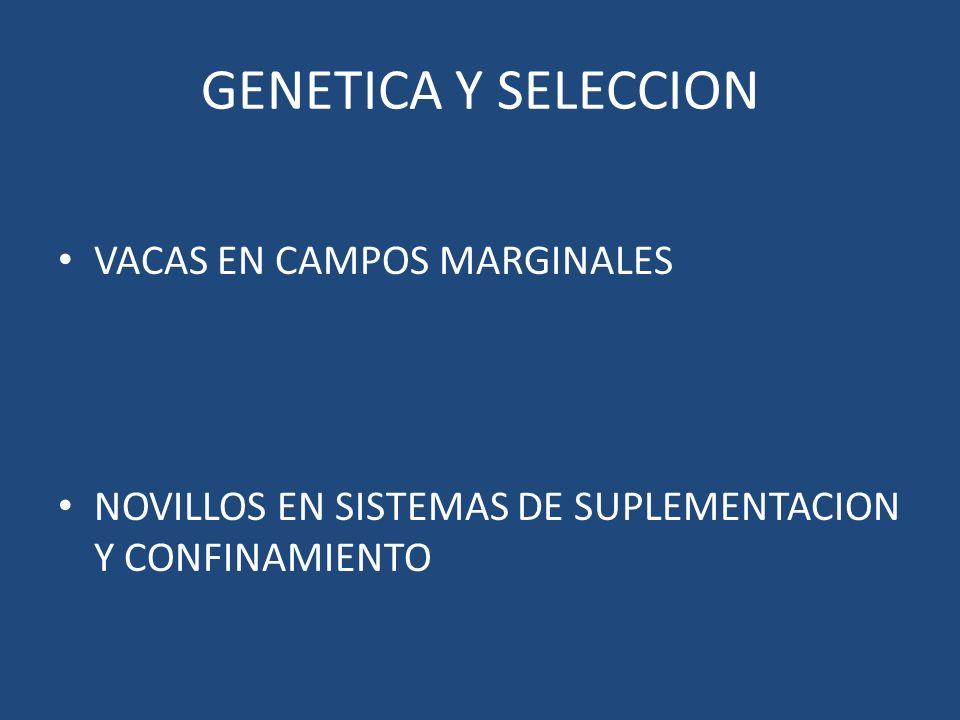 GENETICA Y SELECCION VACAS EN CAMPOS MARGINALES NOVILLOS EN SISTEMAS DE SUPLEMENTACION Y CONFINAMIENTO