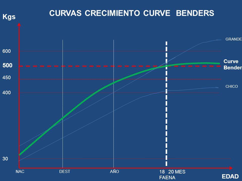 Kgs 600 500 450 400 30 EDAD NACDESTAÑO 1820 MES FAENA GRANDE CHICO Curve Bender CURVAS CRECIMIENTO CURVE BENDERS