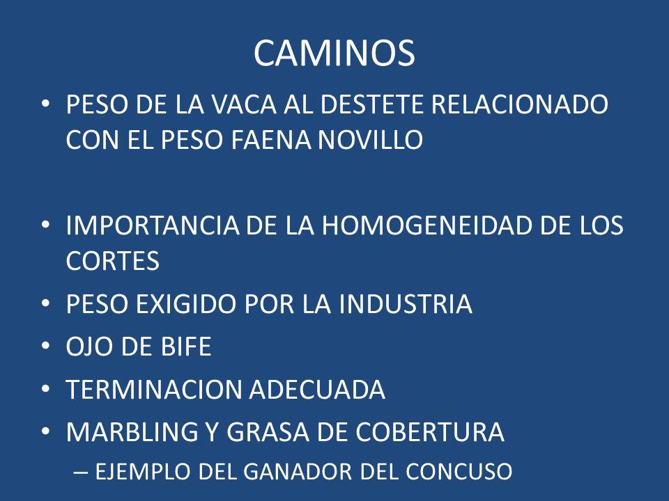 CAMINOS PESO DE LA VACA AL DESTETE RELACIONADO CON EL PESO FAENA NOVILLO IMPORTANCIA DE LA HOMOGENEIDAD DE LOS CORTES PESO EXIGIDO POR LA INDUSTRIA OJ
