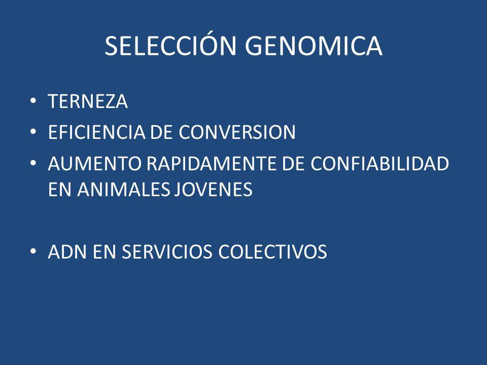 SELECCIÓN GENOMICA TERNEZA EFICIENCIA DE CONVERSION AUMENTO RAPIDAMENTE DE CONFIABILIDAD EN ANIMALES JOVENES ADN EN SERVICIOS COLECTIVOS