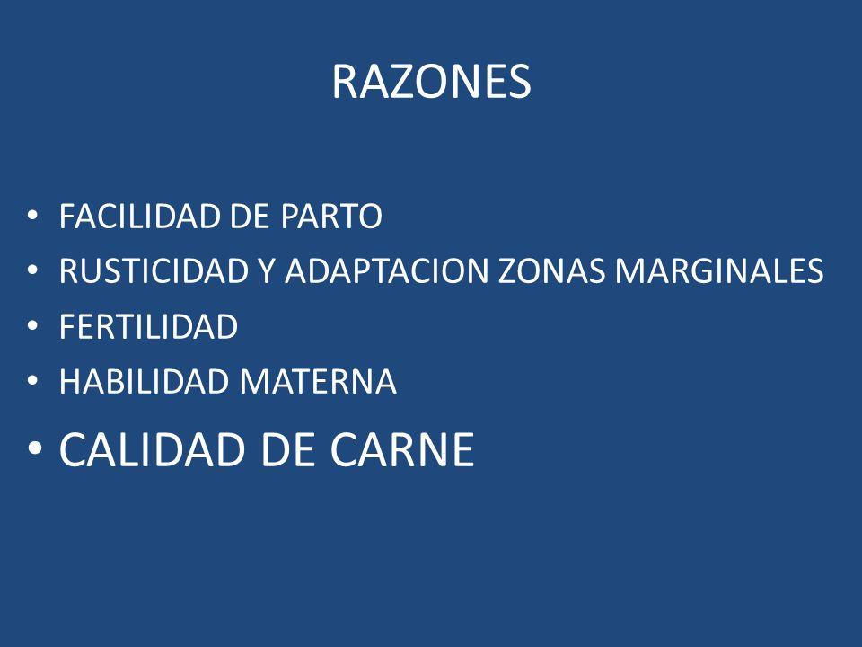 RAZONES FACILIDAD DE PARTO RUSTICIDAD Y ADAPTACION ZONAS MARGINALES FERTILIDAD HABILIDAD MATERNA CALIDAD DE CARNE