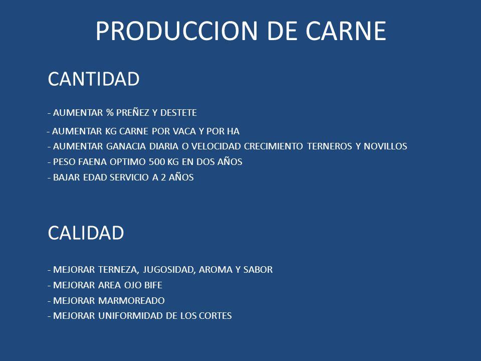TIEMPOS DE PRODUCCION CRIADOR 3 A 4 AÑOS CABAÑA 6 A 7 AÑOS PENSAR HACIA ADELANTE