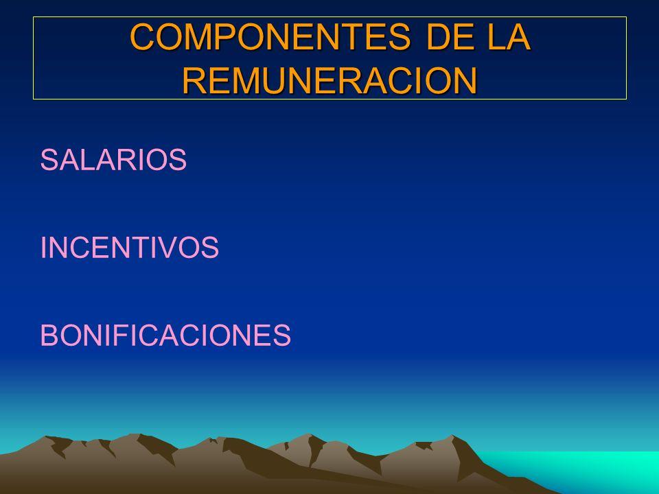 COMPONENTES DE LA REMUNERACION SALARIOS INCENTIVOS BONIFICACIONES