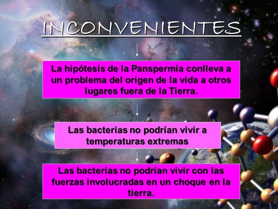 VENTAJAS VENTAJAS Las bacterias pueden vivir en medios hostiles / opuestos Un hecho que apoya la teoría de la panspermia es que bacterias fueron lleva