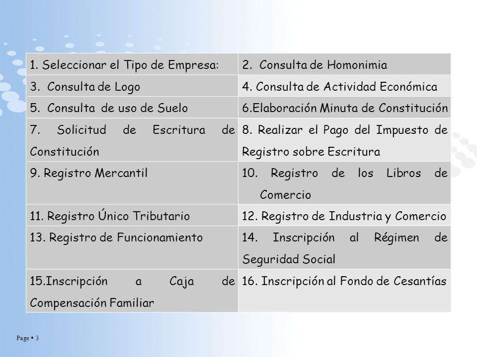 Page 3 1. Seleccionar el Tipo de Empresa:2. Consulta de Homonimia 3. Consulta de Logo4. Consulta de Actividad Económica 5. Consulta de uso de Suelo6.E