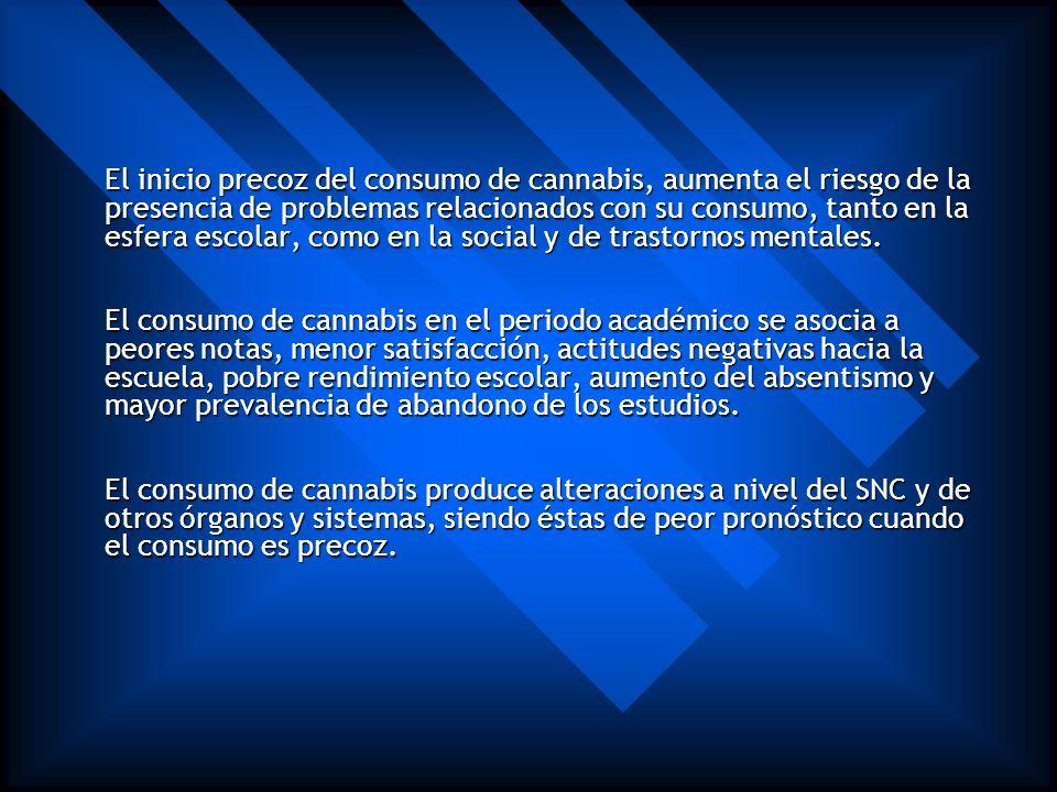 Conclusiones (de la comisión clínica del gobierno español en febrero 2006) El cannabis es la droga ilegal más consumida en todo el mundo y su consumo