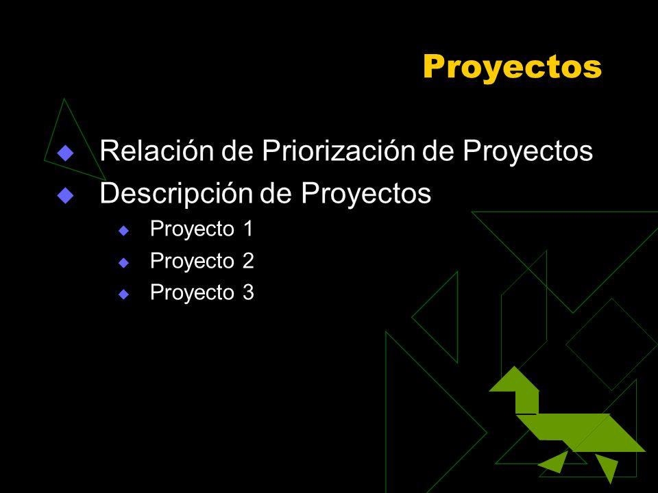 Proyectos Relación de Priorización de Proyectos Descripción de Proyectos Proyecto 1 Proyecto 2 Proyecto 3