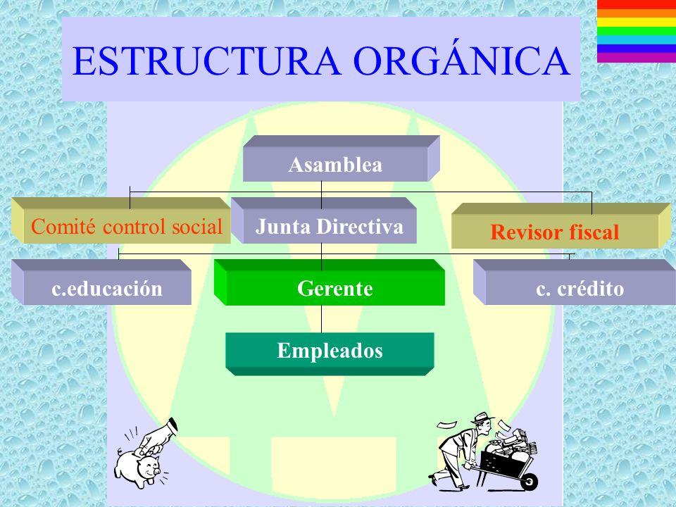 FUNCIONES ADMINISTRATIVAS »Planeación »Organización »Dirección »Ejecución »Coordinación »Control »Evaluación