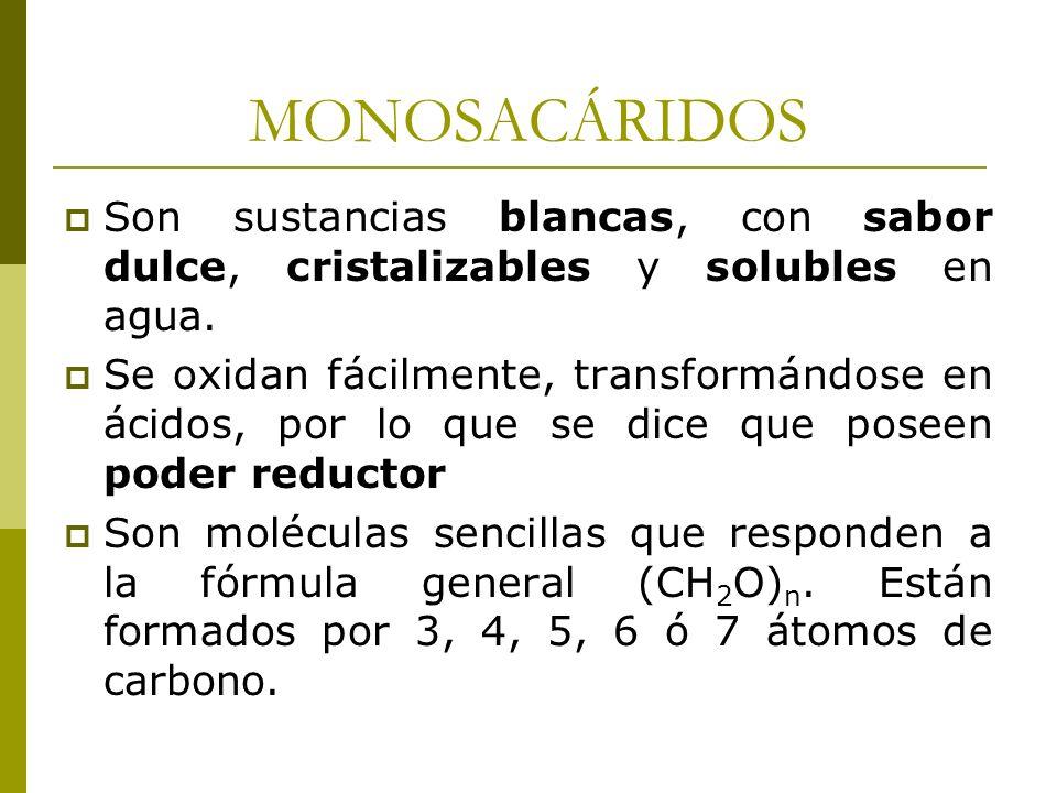 MONOSACÁRIDOS Son sustancias blancas, con sabor dulce, cristalizables y solubles en agua. Se oxidan fácilmente, transformándose en ácidos, por lo que