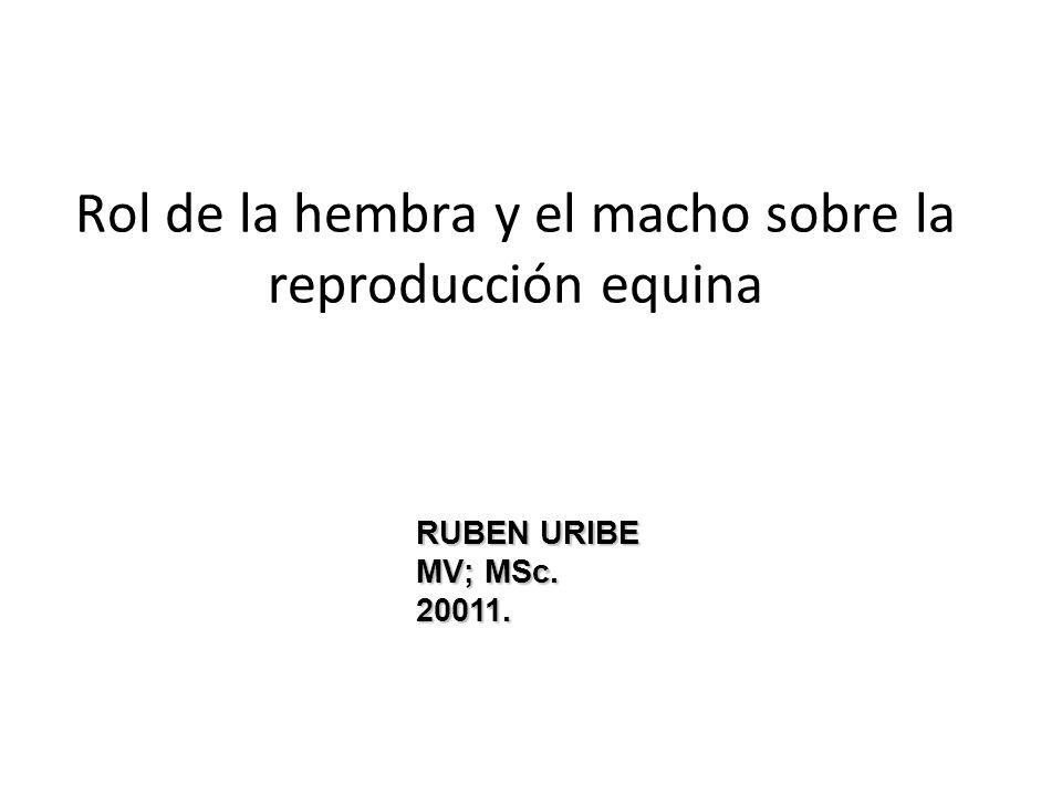 Rol de la hembra y el macho sobre la reproducción equina RUBEN URIBE MV; MSc. 20011.
