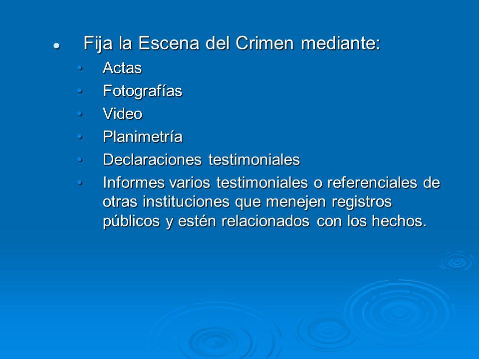 Fija la Escena del Crimen mediante: Fija la Escena del Crimen mediante: ActasActas FotografíasFotografías VideoVideo PlanimetríaPlanimetría Declaracio