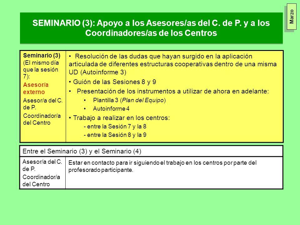 SEMINARIO (3): Apoyo a los Asesores/as del C. de P. y a los Coordinadores/as de los Centros Seminario (3) (El mismo día que la sesión 7): Asesor/a ext