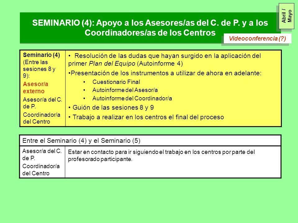 Seminario (4) (Entre las sesiones 8 y 9): Asesor/a externo Asesor/a del C. de P. Coordinador/a del Centro Resolución de las dudas que hayan surgido en