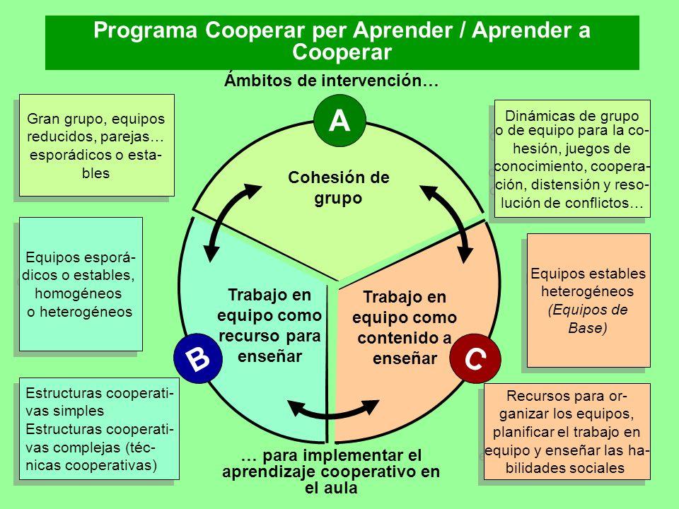 C Trabajo en equipo como contenido a enseñar B Trabajo en equipo como recurso para enseñar A Cohesión de grupo Gran grupo, equipos reducidos, parejas…