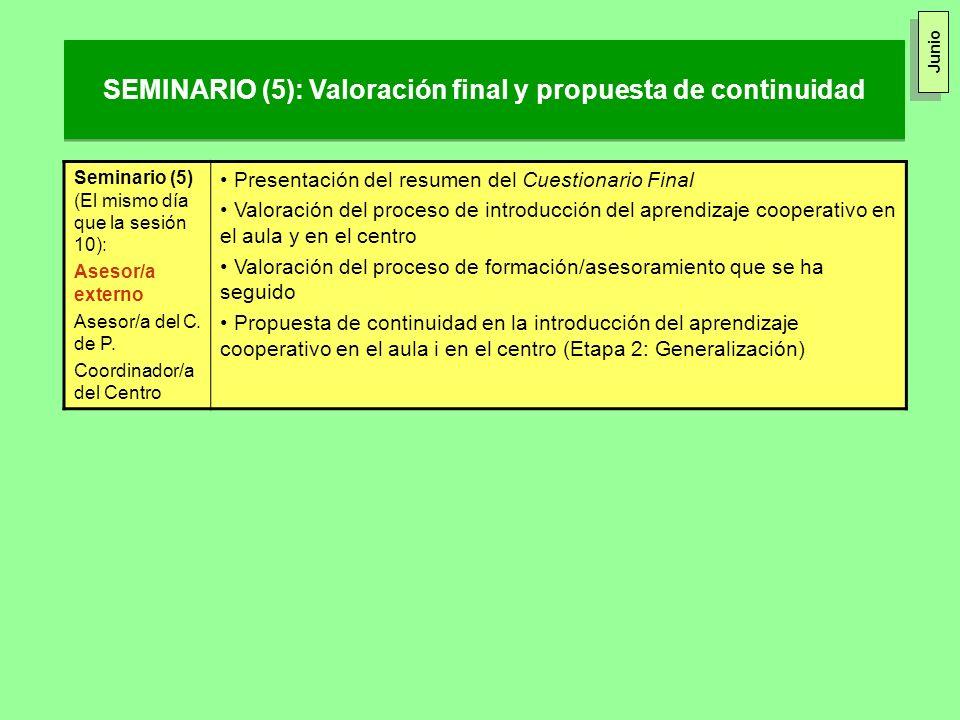 SEMINARIO (5): Valoración final y propuesta de continuidad Seminario (5) (El mismo día que la sesión 10): Asesor/a externo Asesor/a del C. de P. Coord