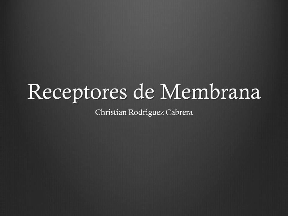 Receptores de Membrana Christian Rodríguez Cabrera