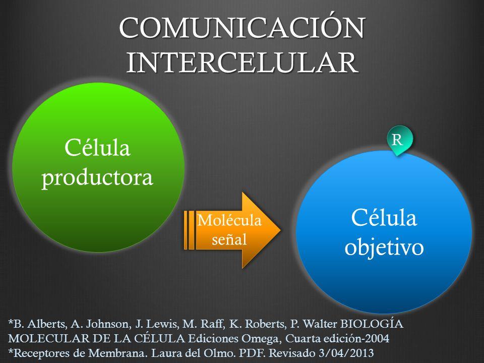 COMUNICACIÓN INTERCELULAR Molécula señal Célula productora Célula objetivo R *B. Alberts, A. Johnson, J. Lewis, M. Raff, K. Roberts, P. Walter BIOLOGÍ