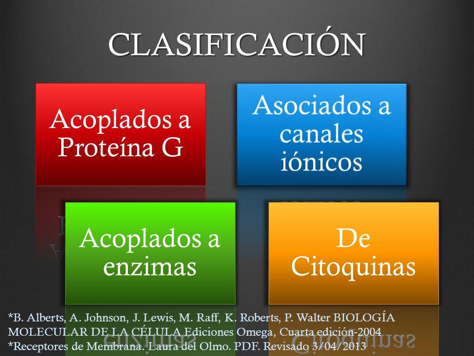 CLASIFICACIÓN Acoplados a Proteína G Asociados a canales iónicos Acoplados a enzimas De Citoquinas *B. Alberts, A. Johnson, J. Lewis, M. Raff, K. Robe